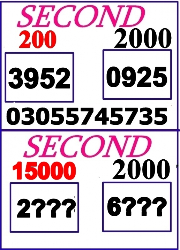 Latest 15000 Prize bond Guess Papers 2019 (5)